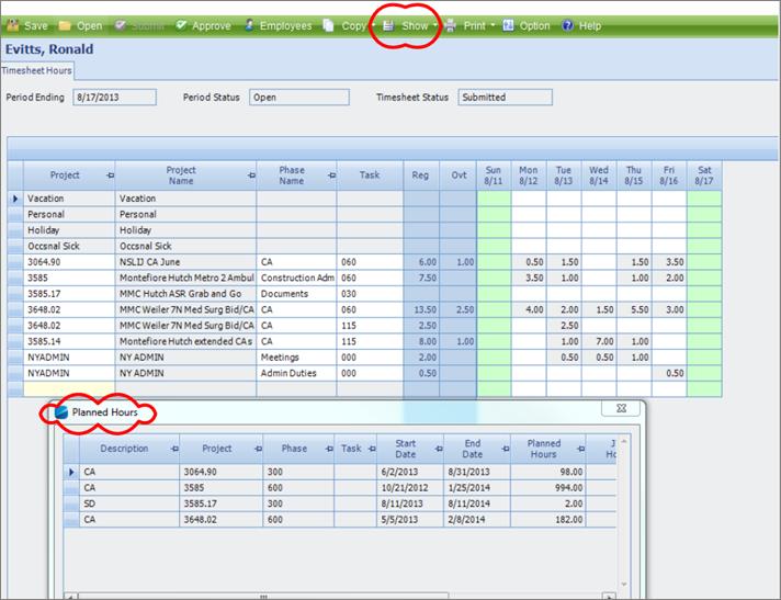 Deltek Vision Time Tracking Screenshot