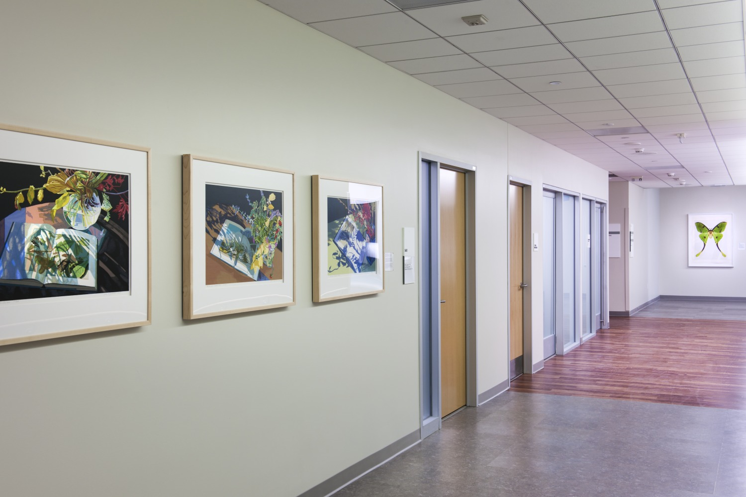 Hospital Featuring Nature Artwork