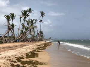 AHAH (1)- Island Impact